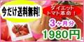 充実トマト / 「充実トマト」商品購入